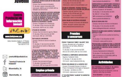 Guía del Centro provincial de Información Juvenil de la Diputación de Valladolid